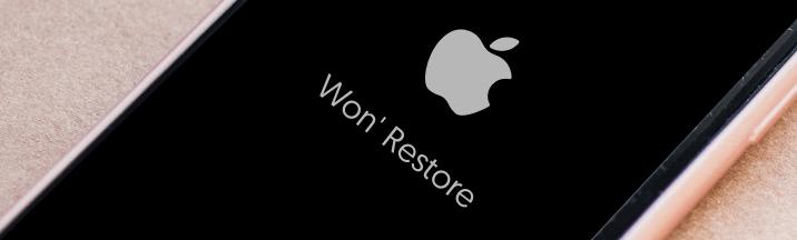Reiboot iphone kann nicht wiederhergestellt werden